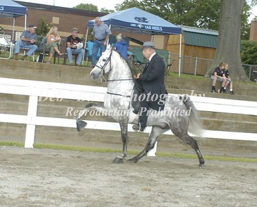CLASS 8  AMATEUR NC MEMBERS ONLY SPECIALTY