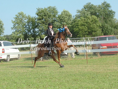 CLASS 5  WALKING YOUTH PONY SPECIALTY(17 & UNDER)
