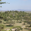 1209_serengeti partk entrance view
