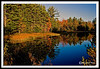 Autumn Pond-10-06-04cr