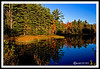 Autumn Pond-10-06-05cr