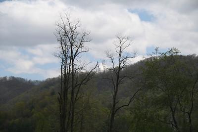 Cherohala Skyway, North Carolina to Tennessee, via Nick Zigmant (4-17-2011)