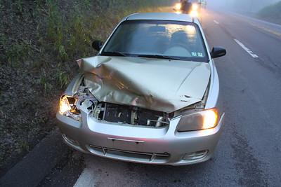 Car Hits Deer, West Penn Pike, SR-309, West Penn (5-28-2011)