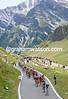 A Leopard-Trek rider leads the peloton in pursuit of Leipheimer...