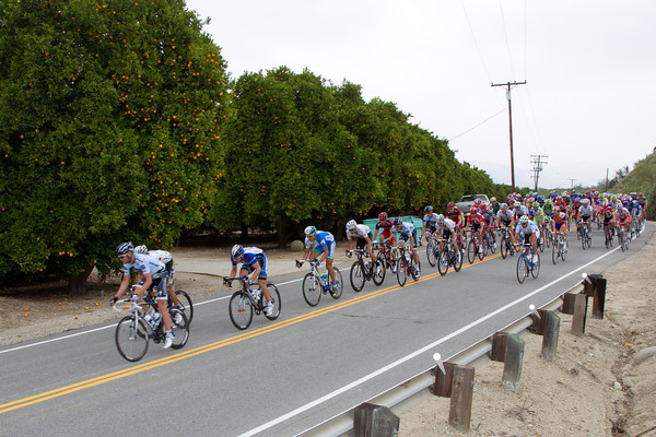 We're off to a fast start past the citrus trees as HTC and the other sprinters teams won't let any break larger than four get up the road.