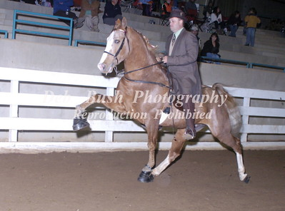 CLASS 13  FOUR YR OLD SPECIALTY