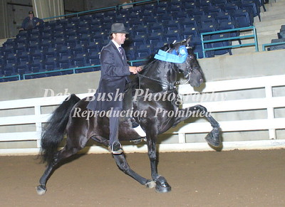 CLASS 18  AMATEUR OWNED & TRAINED SPECIALTY