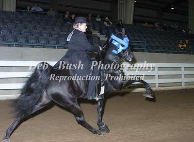 CLASS 26  AMATEUR 50 & OVER SPECIALTY