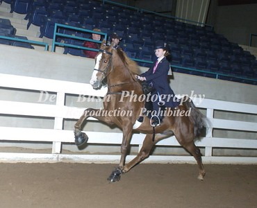 CLASS 29  JUVENILE PONY  17 YRS& UNDER SPECIALTY