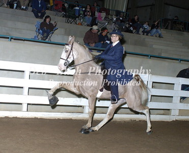 CLASS 40  TWO YR OLD AMATEUR MARES & GELDINGS