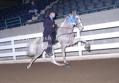 CLASS 8  THREE YR OLD OPEN MARES & GELDINGS RC