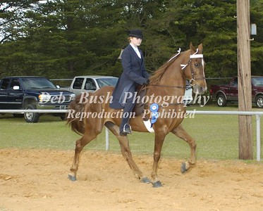 CLASS 20  LITE SHOD AMATEUR OWNED & TRAINED CANTER