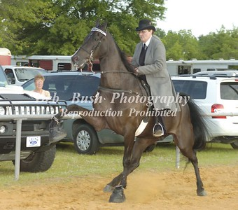 CLASS 21  WALKING AMATEUR LADIES SPECIALTY