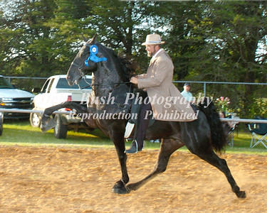 CLASS 24  WALKING 4 YR OLD AMATEUR SPECIALTY