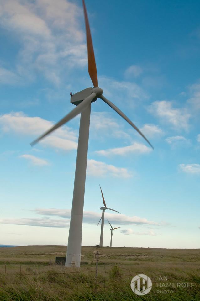 Roadside Wind Farm