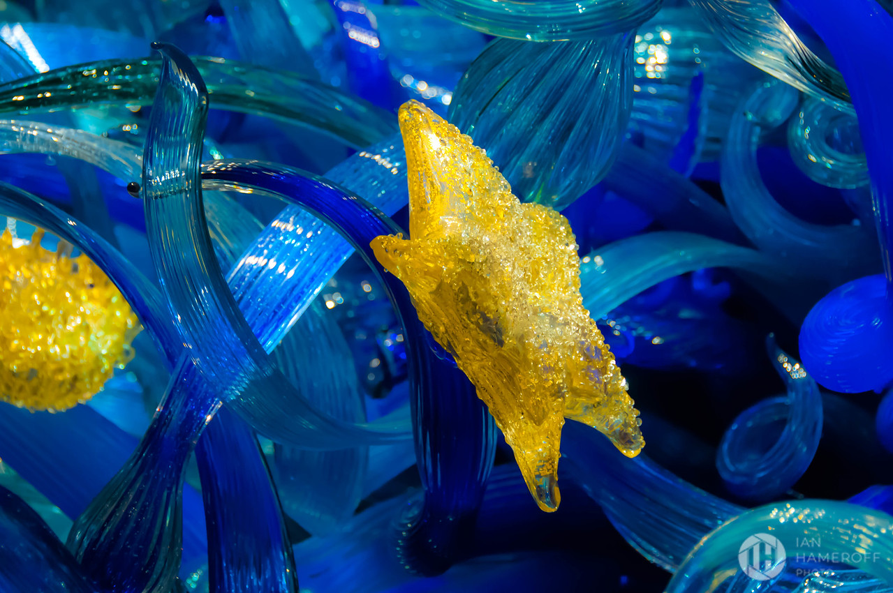 Blue and Yellow Glass