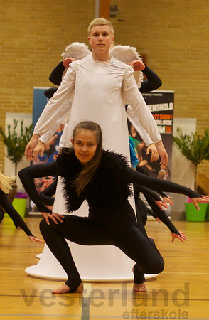Gymnastikopvisning i Paarup, Fyn