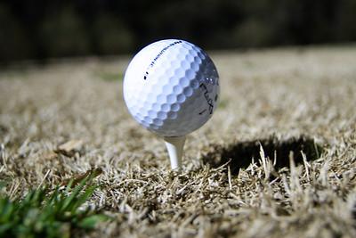 Gott'a Love Golf!