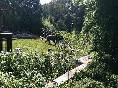 Sophomore Zoo Trip