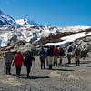 Alaska Trip 2012-4342.jpg