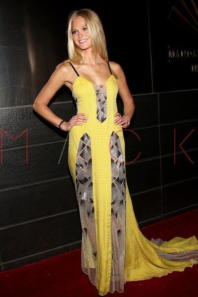 NEW YORK, NY - APRIL 10:  Erin Heatherton attends the 9th annual Spring Dinner Dance New Year's In April: A Fool's Fete at the Mandarin Oriental Hotel on April 10, 2012 in New York City.  (Photo by Steve Mack/S.D. Mack Pictures)