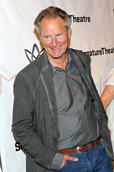"""NEW YORK, NY - AUGUST 27:  Sam Shepard attends the """"Heartless"""" opening night party at Signature Theatre Company's Pershing Square Signature Center on August 27, 2012 in New York City.  (Photo by Steve Mack/S.D. Mack Pictures)"""