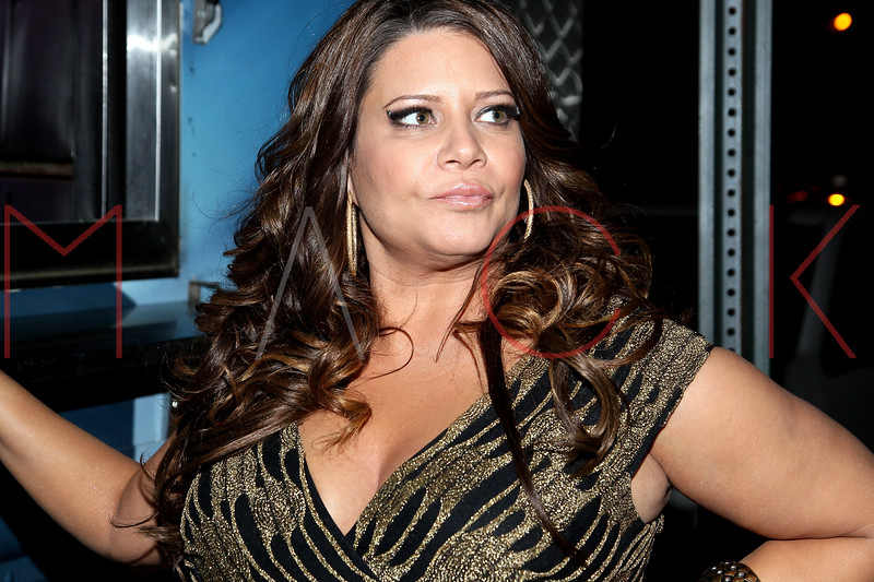 NEW YORK, NY - DECEMBER 14:  Karen Gravano attends the Operation Mob Wives Saving Lives Hurricane Sandy Benefit at Chelsea Manor on December 14, 2012 in New York City.  (Photo by Steve Mack/S.D. Mack Pictures)