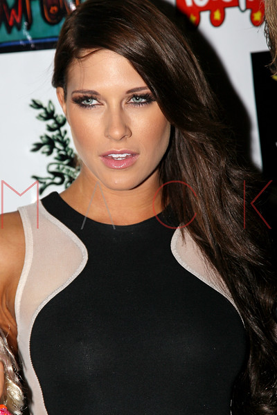 NEW YORK, NY - DECEMBER 15:  Barbie Blank attends Hurricane Sandy Toys For Tots Benefit hosted by Boss Models And Barbie Blank on December 15, 2012 in New York, United States.  (Photo by Steve Mack/S.D. Mack Pictures)