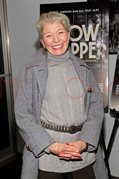 """NEW YORK, NY - DECEMBER 16:  Phyllis Somerville attends the """"Show Stopper"""" premiere at the DGA Theater on December 16, 2012 in New York City.  (Photo by Steve Mack/S.D. Mack Pictures)"""