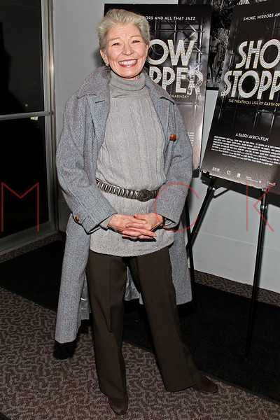 "NEW YORK, NY - DECEMBER 16:  Phyllis Somerville attends the ""Show Stopper"" premiere at the DGA Theater on December 16, 2012 in New York City.  (Photo by Steve Mack/S.D. Mack Pictures)"