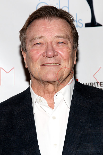 NEW YORK, NY - FEBRUARY 19:  CBS News and 60 Minutes Correspondent Steve Kroft attends the 2012 Writers Guild East Coast Awards at B.B. King Blues Club & Grill on February 19, 2012 in New York City.  (Photo by Steve Mack/S.D. Mack Pictures)