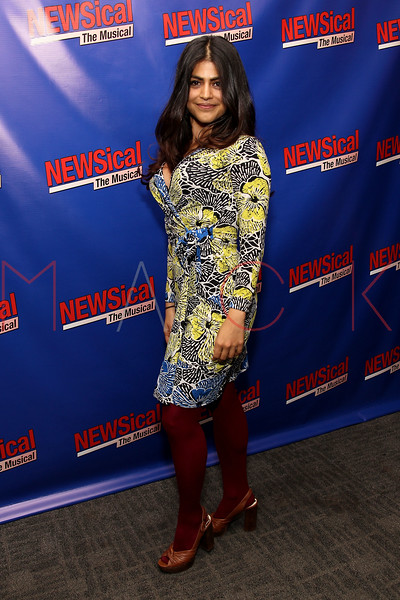 "NEW YORK, NY - FEBRUARY 01:  Shenaz Treasury attends the opening night of ""NEWSical the Musical: End of the World Edition"" at the  The Kirk Theater at Theatre Row on February 1, 2012 in New York City.  (Photo by Steve Mack/S.D. Mack Pictures)"