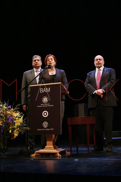 NEW YORK, NY - JANUARY 16:  NY City Council Speaker Christine C. Quinn attends the 6th annual Brooklyn Tribute to Dr. Martin Luther King, Jr. at the BAM Howard Gilman Opera House on January 16, 2012 in New York City.  (Photo by Steve Mack/S.D. Mack Pictures)