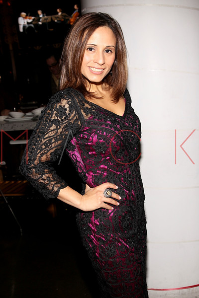 NEW YORK, NY - JANUARY 19:  Vive Katerin at the Hudson Eatery on January 19, 2012 in New York City.  (Photo by Steve Mack/S.D. Mack Pictures)