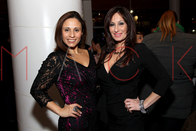 NEW YORK, NY - JANUARY 19:  Vive Katerin and Billie Mitchell at the Hudson Eatery on January 19, 2012 in New York City.  (Photo by Steve Mack/S.D. Mack Pictures)