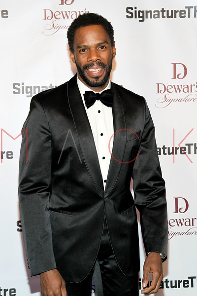 NEW YORK, NY - JANUARY 30:  Colman Domingo attends The Signature Center Opening gala on January 30, 2012 in New York City.  (Photo by Steve Mack/S.D. Mack Pictures)