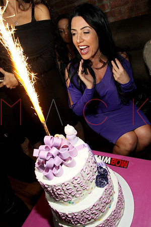 NEW YORK, NY - MARCH 10:  Ramona Rizzo's birthday event at Element on March 10, 2012 in New York City.