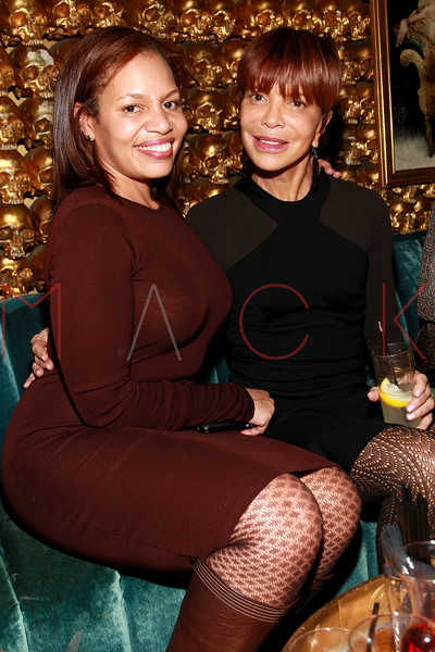 NEW YORK, NY - MARCH 11:  Quinn Rhone and Music industry executive Sylvia Rhone attend Sylvia Rhone's surprise birthday party at Goldbar on March 11, 2012 in New York City.  (Photo by Steve Mack/S.D. Mack Pictures)