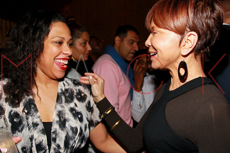 NEW YORK, NY - MARCH 11:  Jenn Goldson and Music industry executive Sylvia Rhone attend Sylvia Rhone's surprise birthday party at Goldbar on March 11, 2012 in New York City.  (Photo by Steve Mack/S.D. Mack Pictures)
