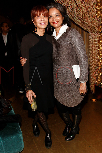NEW YORK, NY - MARCH 11:  Music industry executive Sylvia Rhone and president and CEO of the Apollo Theater Jonelle Procope attend Sylvia Rhone's surprise birthday party at Goldbar on March 11, 2012 in New York City.  (Photo by Steve Mack/S.D. Mack Pictures)