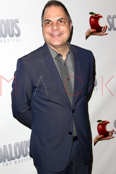 "NEW YORK, NY - NOVEMBER 15:  David Friedman attends the ""Scandalous"" Broadway Opening Night"" After Party at Copacabana on November 15, 2012 in New York City.  (Photo by Steve Mack/S.D. Mack Pictures)"