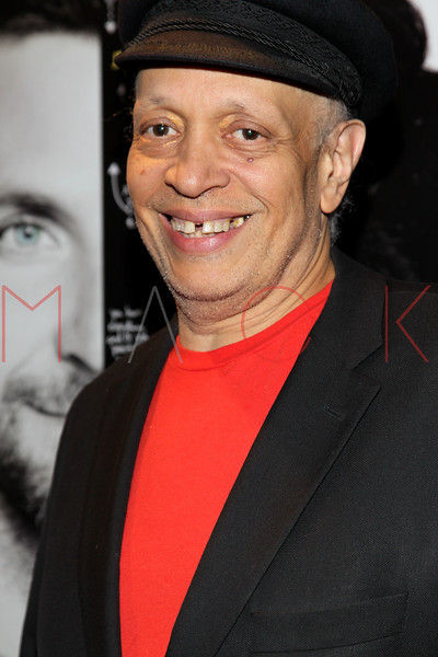 """NEW YORK, NY - NOVEMBER 11:  Walter Mosley attends the """"Silver Linings Playbook"""" premiere at Florence Gould Hall on November 11, 2012 in New York City.  (Photo by Steve Mack/S.D. Mack Pictures)"""