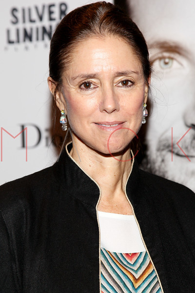 """NEW YORK, NY - NOVEMBER 11:  Julie Taymor attends the """"Silver Linings Playbook"""" premiere at Florence Gould Hall on November 11, 2012 in New York City.  (Photo by Steve Mack/S.D. Mack Pictures)"""