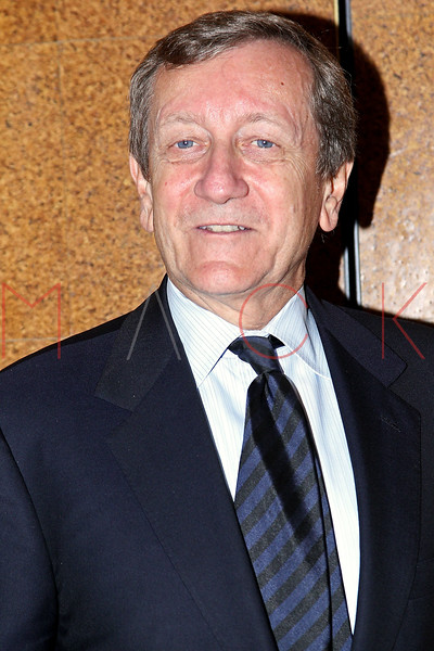 NEW YORK, NY - OCTOBER 01:  Brian Ross attends the 33rd annual News & Documentary Emmy awards at Frederick P. Rose Hall, Jazz at Lincoln Center on October 1, 2012 in New York City.  (Photo by Steve Mack/S.D. Mack Pictures)