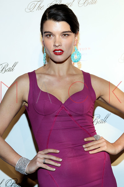 NEW YORK, NY - OCTOBER 22:  Crystal Renn at Cipriani Wall Street on October 22, 2012 in New York City.  (Photo by Steve Mack/S.D. Mack Pictures)