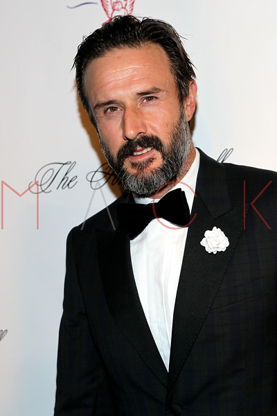 NEW YORK, NY - OCTOBER 22:  David Arquette at Cipriani Wall Street on October 22, 2012 in New York City.  (Photo by Steve Mack/S.D. Mack Pictures)