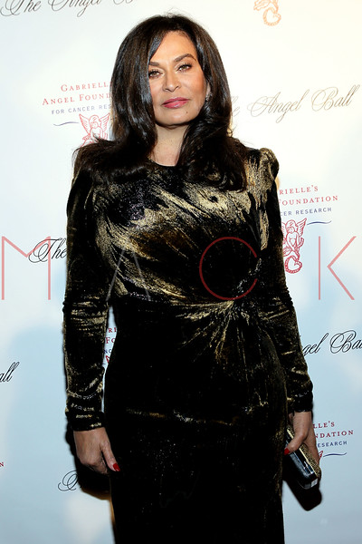 NEW YORK, NY - OCTOBER 22:  Tina Knowles at Cipriani Wall Street on October 22, 2012 in New York City.  (Photo by Steve Mack/S.D. Mack Pictures)