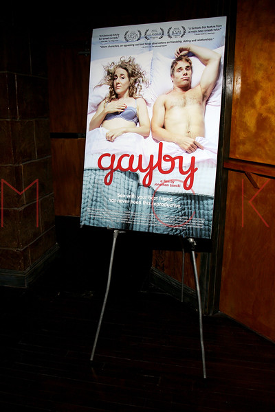 "NEW YORK, NY - OCTOBER 10:  Atmosphere at ""Gaybe"" New York Premiere at Crosby Street Hotel on October 10, 2012 in New York City.  (Photo by Steve Mack/S.D. Mack Pictures)"