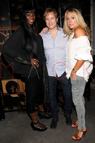 NEW YORK, NY - SEPTEMBER 14:  Aja Patterson, Rob Schaffer and Anna Rothschild at HK Lounge on September 14, 2012 in New York City.  (Photo by Steve Mack/S.D. Mack Pictures)