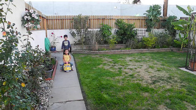 January 29, 2012: Backyard Fun